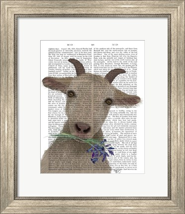 Framed Goat and Bluebells Book Print Print
