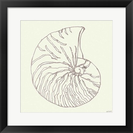 Framed Coastal Breeze Shell Sketches VII Silver Print