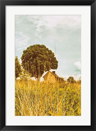 Framed Grass and Sky Print
