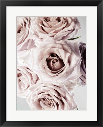 Framed Dusty Rose Cluster Print