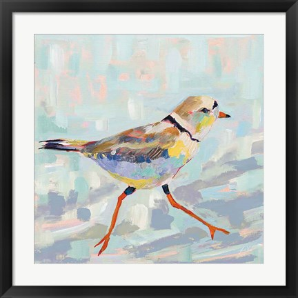 Framed Coastal Plover I Neutral Print