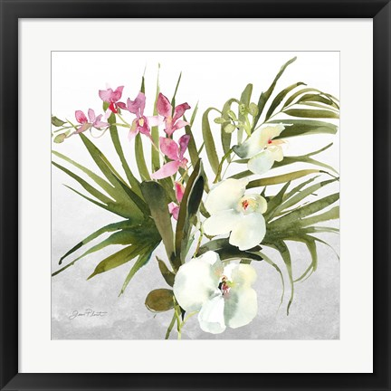 Framed Beautiful Orchids A Print