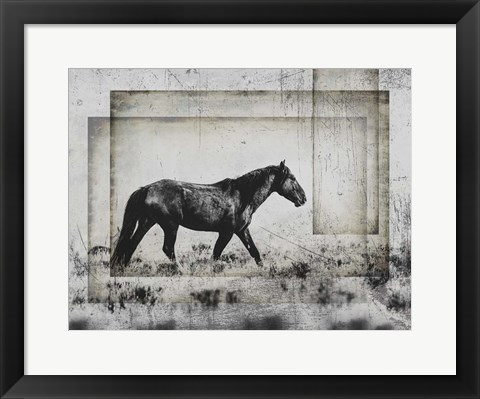 Framed Wild Horses of the Great Basin 5 Print