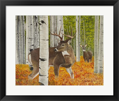 Framed Buck and Doe Early Rut Print