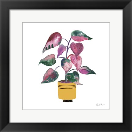 Framed Potted Jewels II Print