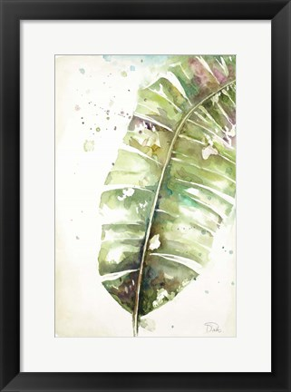 Framed Watercolor Plantain Leaves II Print