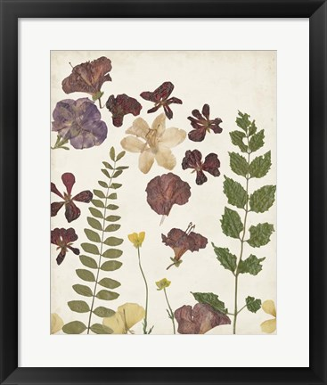 Framed Pressed Flower Arrangement VI Print