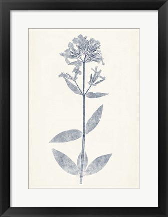 Framed Navy Botanicals V Print