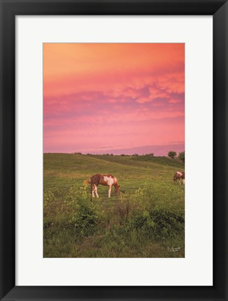 Framed Horse at Sunset Print