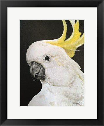 Framed White Cockatoo Print