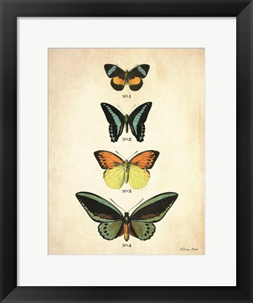 Framed Butterflies 2 Print