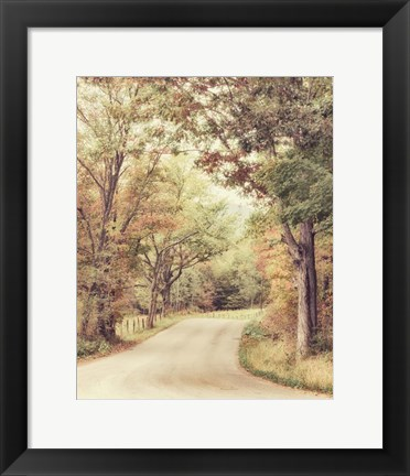 Framed Along The Path Print