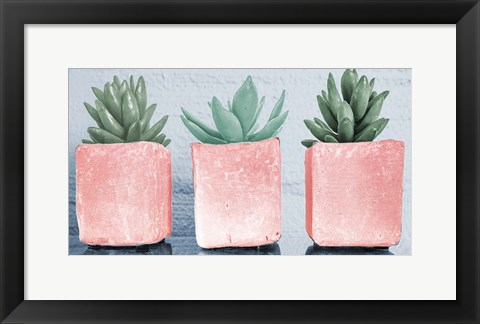 Framed Pink Potted Succulents Print
