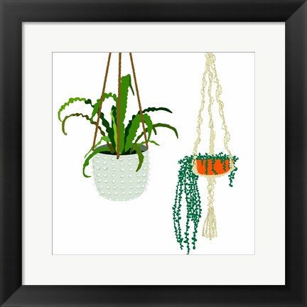 Framed Hanging Plant Duo Print