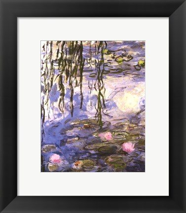 Framed Waterlilies (pink flowers) Print