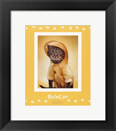 Framed Raincat Print