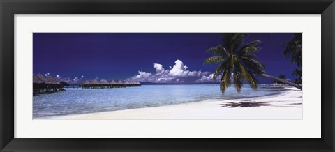Framed Tropical Beach Panorama Print