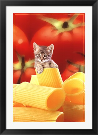 Framed Kitten On Pasta Print