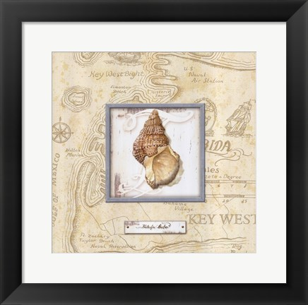 Framed Sea Treasure I Print