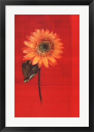 Framed Flower on Red Print
