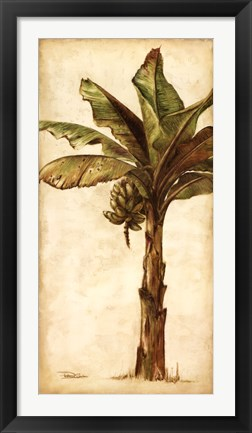 Framed Tropic Banana II Print