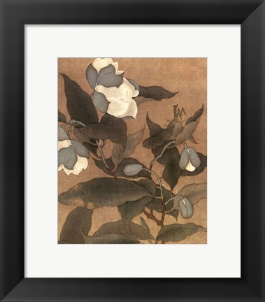 Framed Magnolia and Praying Mantis Print