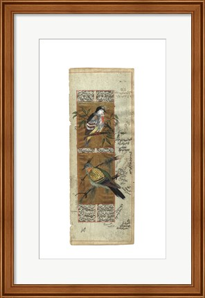 Framed Bird Pair from India I Print