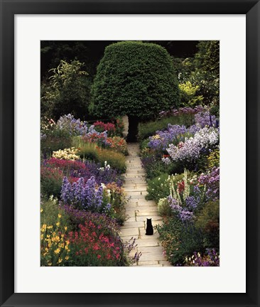 Framed Garden Cat Print