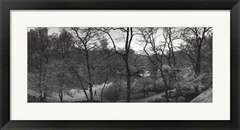 Framed Pond and Gapstow Bridge, Central Park, 1992 Print