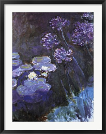 Framed Waterlillies and Agapanthus Print
