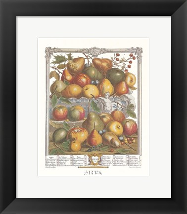 Framed January/Twelve Months of Fruits, 1732 Print
