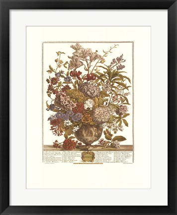 Framed July/Twelve Months of Flowers, 1730 Print