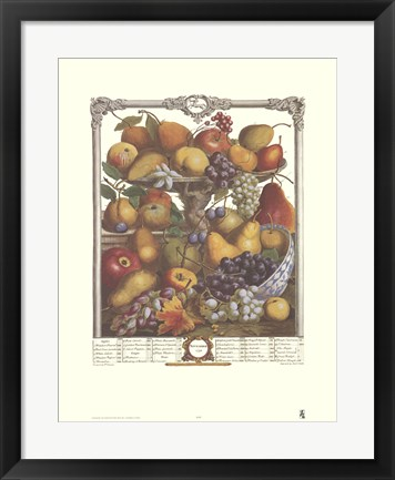 Framed November/Twelve Months of Fruits, 1732 Print