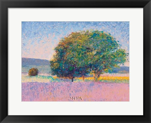Framed Trees in Provence Print