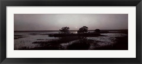 Framed South Carolina Shore Print