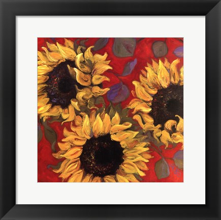 Framed Sunflower I Print