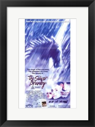Framed Silver Brumby Print