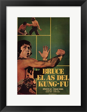 Framed Bruce and Shao-Lin Kung Fu Print