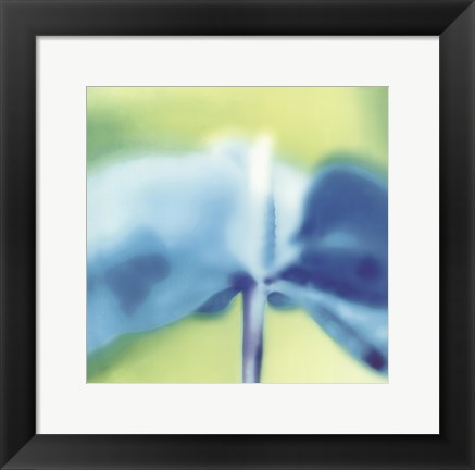 Framed Blue Indigo Print