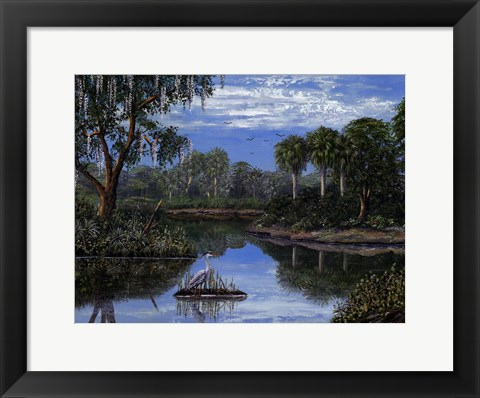 Framed Florida Wetlands Print