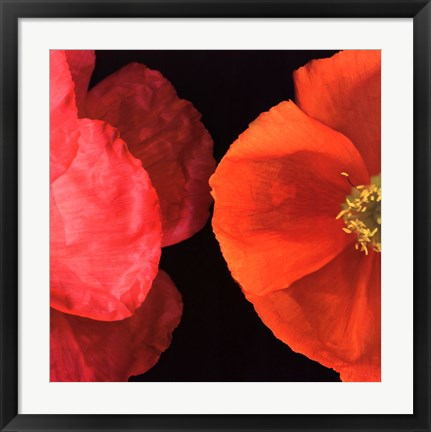 Framed Dual Poppy Left Print