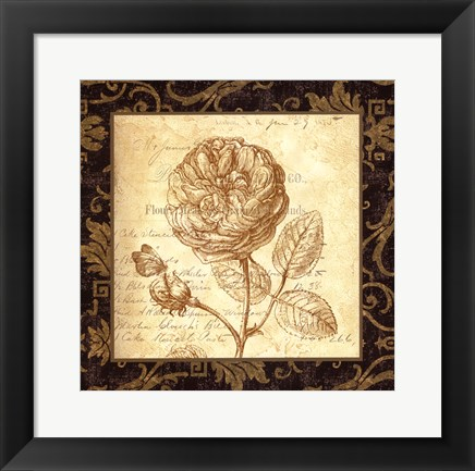 Framed Rose - with a border Print