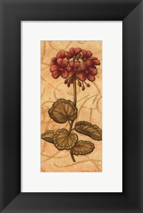 Framed Red Passion Geranium - Petite Print