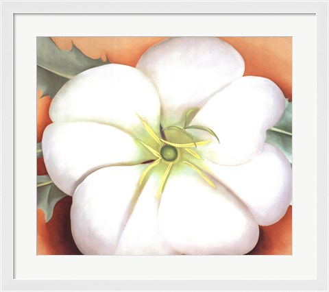 Framed White Flower on Red Earth, No. 1 Print