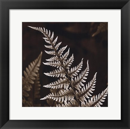 Framed Heathers Feathers Print
