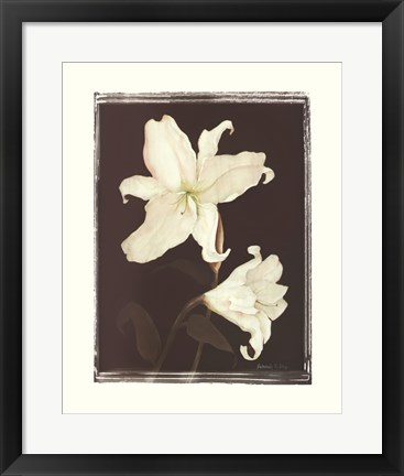 Framed White Lilies in Chocolate Print