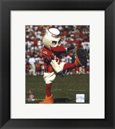 Framed Sebastian -The Mascot of  University of Miami Hurricanes, 2003 Print