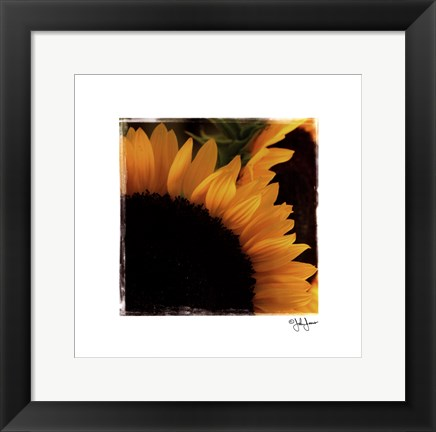 Framed Sunflower Daze Print