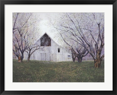 Framed Orchard Blossoms Print