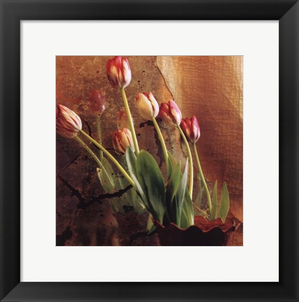 Framed Tulip Reflection Print